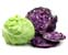 tag Cabbage icon
