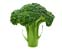 tag Broccoli icon