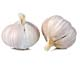 tag Garlic icon