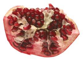 tag Pomegranate icon